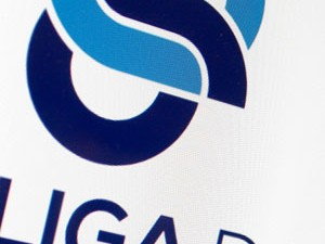 LIGA DE GAIA<br>Rebranding do Logótipo